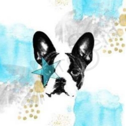 Organic-Cotton Jersey -  Frenchie