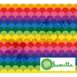 Organic Cotton Jersey - Rainbow Hills