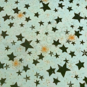 Sweat Fabric - Stars Gold Sparkle- Mint