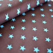 Sweater Fleece - Stars - Brown/ Turquoise
